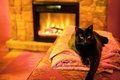 Cat by a fireplace Royalty Free Stock Photo