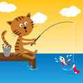 Cat fishing at summer sunny day Stock Image