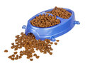 Cat food double bowl Royalty Free Stock Photo