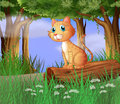 A cat in a forest illustration of Royalty Free Stock Photo