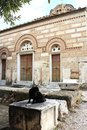 Cat in front of Church of the Holy Apostles in Ancient Agora of Athens