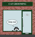 Cat grooming establishment Stock Image
