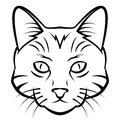 Cat head tattoo vetora illustration Imagem de Stock Royalty Free
