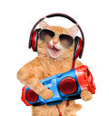 Cat in headphones listening to music with a tape recorder. Royalty Free Stock Photo