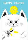 Cat holding yellow tulip flower and chicken bird. Happy Easter Greeting card. Baby chick bird friends. Cute cartoon funny Royalty Free Stock Photo