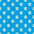 Cat house pattern seamless
