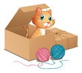 A cat inside the box illustration of on white background Stock Image