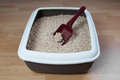 Cat litter box with biodegradable pine wood chips Stock Images