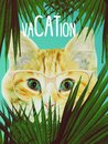stock image of  Cat looking out from tropic palm leaves. Trendy zine collage, fashion print, poster