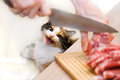 Cat and meat Royalty Free Stock Photos
