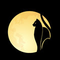 Cat moon black silhouette against a full backdrop Royalty Free Stock Image