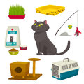 Cat object set, items and stuff, vector cartoon illustration