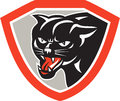Cat panther head shield preta Foto de Stock