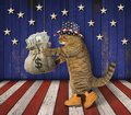 Cat patriot with a sack of money 2 Royalty Free Stock Photo