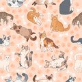 Cat pattern. Seamless texture with cute multicolor cats, kids wallpapers with funny happy pets, fabric textile vector