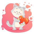 Cat pet isolated holding heart Royalty Free Stock Image