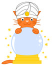 Cat predict future with magic crystal ball cartoon illustration funny Stock Images