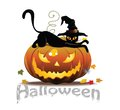 Cat and pumpkin vector halloween icon with Stock Photo