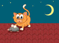 A cat and a rat at the rooftop illustration of Royalty Free Stock Photos
