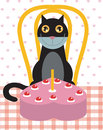 Cat's birthday celebration Stock Images
