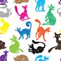 Cat seamless pattern background sketch collection vector animal set sketch kitty isolated on white Royalty Free Stock Photo
