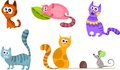 Cat set Royalty Free Stock Photos