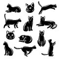 Cat set vector this is file of eps format Stock Photos
