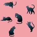 Cat shadows Royalty Free Stock Photo