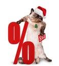 Cat Shopper Sales.