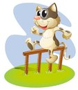 A cat sitting on a wooden stick illustration of white background Royalty Free Stock Photography