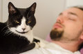 Cat sitting on young man sleeping with a his chest Royalty Free Stock Photography