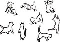 Cat sketches collection isolated on white Royalty Free Stock Photos
