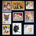 Cat stamps Stock Photos