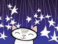 Cat From The Stars