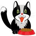 Cat and tureen with meal black on white background Royalty Free Stock Photography