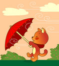 Cat with Umbrella Royalty Free Stock Photos