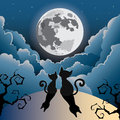 Cat under the full moon silhouette of two cute kitty halloween Royalty Free Stock Images