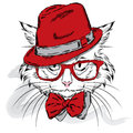 Cat vector. Cartoon cat. Cute cat in the clothes. Hip-hop. Cat in a cap and glasses. Hipster. Postcard with the cat.