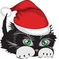 Cat wearing a Santa Claus hat Royalty Free Stock Image