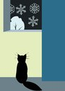 Cat and window black looking at snowfall Royalty Free Stock Images