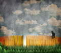 Cat on yellow fence a with a black and a cloudy sky a textured surface concept for what is the other side Stock Images