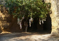 Catacomb entrance with tree and tied pieces of cloth Royalty Free Stock Photo