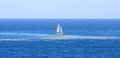 Catamaran Sails Through Pollut...
