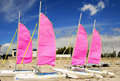 Catamaran school, Le Rohaliguen, France Royalty Free Stock Image