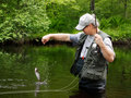Catching a Trout Stock Photography