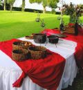 Catering buffet red Stock Photography