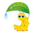 Caterpillar cute yellow hiding under a leaf from the rain Stock Photos