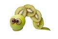 Caterpillar made of kiwi Royalty Free Stock Photo