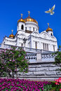The Cathedral of Christ the Saviour Royalty Free Stock Image
