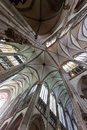 The cathedral of cologne interior ceiling and columns Stock Image